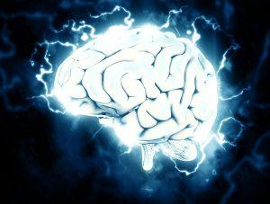 ストレスを感じているのは脳