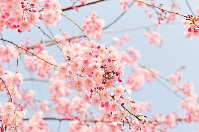 春の 疲れ 春に体の 疲労 、 だるさ を感じたときの対策